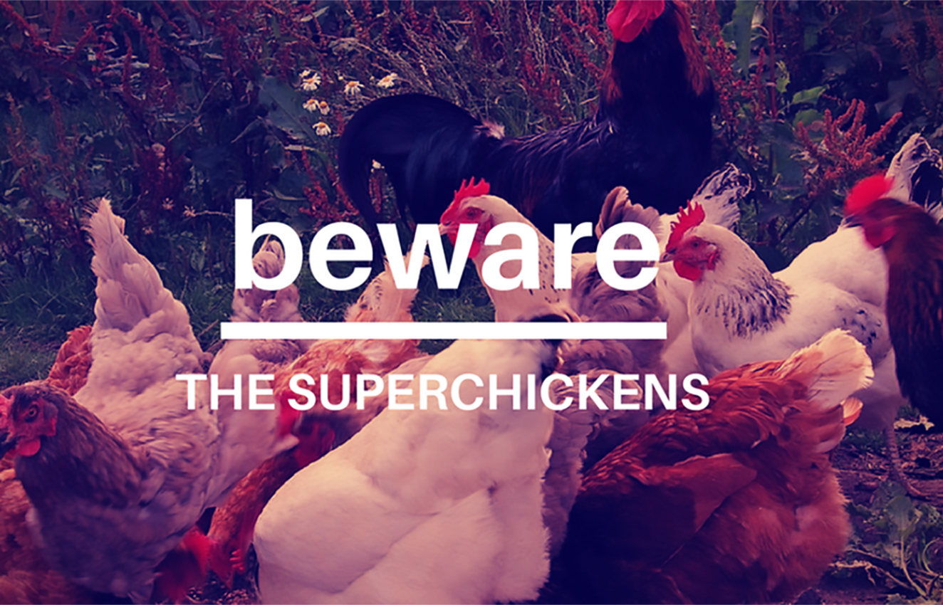 lessons-in-business-superchickens-3