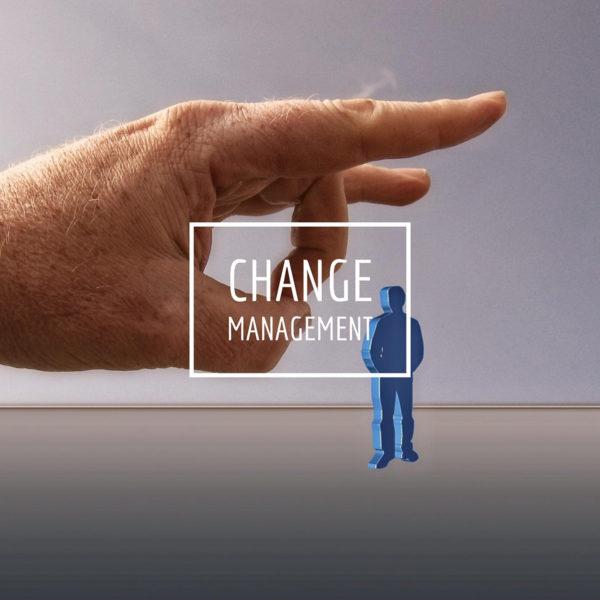 Change Management Courses for Business Development
