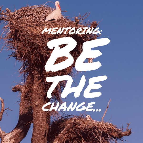 mentoring be the change someone else needs
