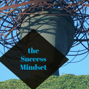 success mindset business development course